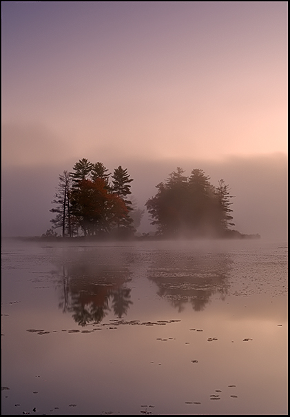 Foggy Dawn at Harvard Pond
